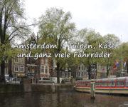 Amsterdam - Tulpen, Käse und ganz viele Fahrräder
