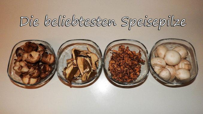 Die beliebtesten Speisepilze auf Kochen-verstehen.de