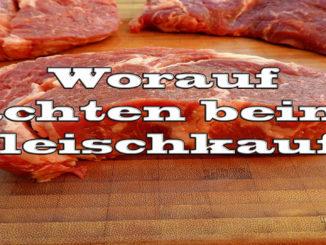 Worauf achten beim Fleischkauf auf Kochen-verstehen.de