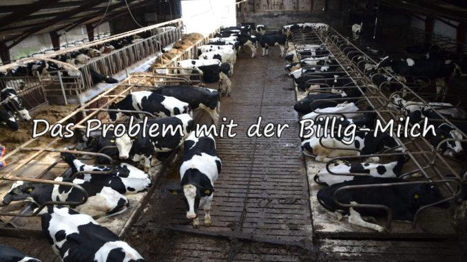 Das Problem mit der Billigmilch auf Kochen-verstehen.de