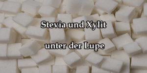 Stevia und Xylit unter der Lupe