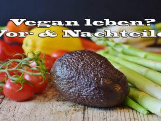 Vorteile & Nachteile einer veganen Lebensweise auf Kochen-verstehen.de