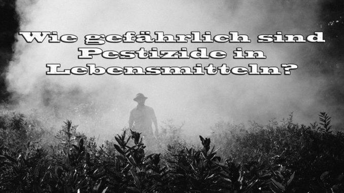 Wie gefährlich sind Pestizide in Lebensmitteln auf Kochen-verstehen.de