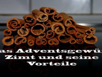 Das Adventsgewürz Zimt und seine Vorteile auf Kochen-verstehen.de